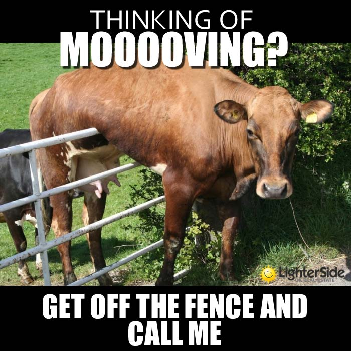 1-get-off-the-fence