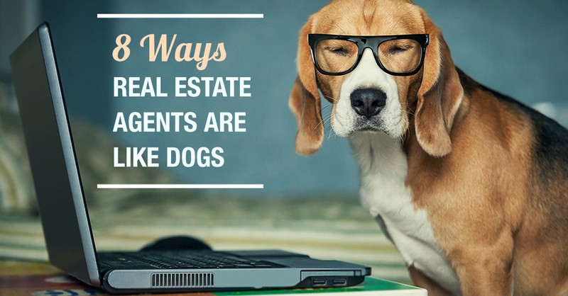 8 Ways Real Estate Agents Are Like Man